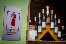 Vigneron Indépendant à Dambach la Ville - Photo Céline SCHNELL Une Fille En Alsace