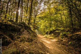 randonnee-chateau-spesbourg-andlau-b©Celine-Schnell-Une-Fille-En-Alsace-3