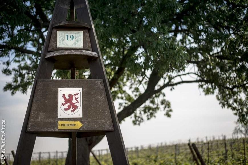 parenthese-authentique-domaine-specht©Celine-Une-Fille-En-Alsace-2019-4