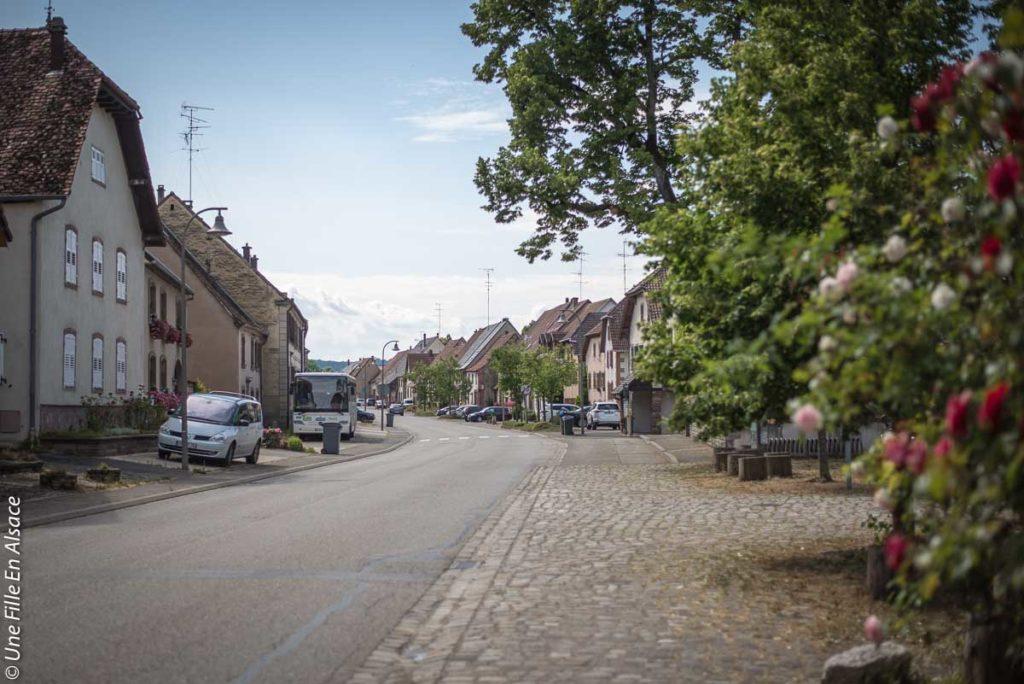 lorentzen©Celine-Schnell-Une-Fille-En-Alsace-2019