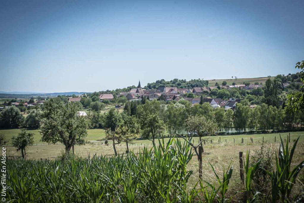 sortie-ecotourisme-la-villa-dehlingen©Celine-Schnell-Une-Fille-En-Alsace-2019-8