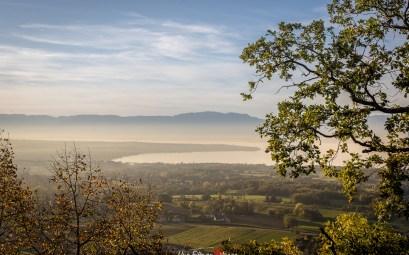 Belvédère des Châteaux d'Allinges- Lac Léman©Celine-Schnell-Une-Fille-En-Alsace-2019