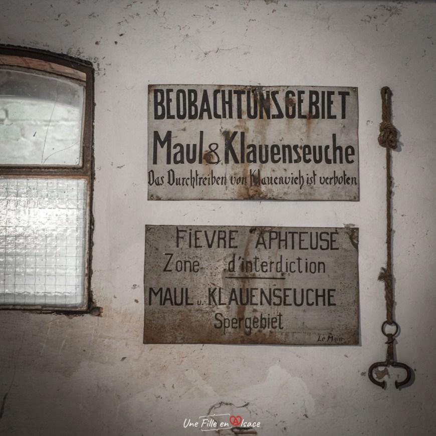 étable-maison-rurale de-loutre-foret-kutzenhausen@Céline-Schnell-Une-Fille-En-Alsace-2020