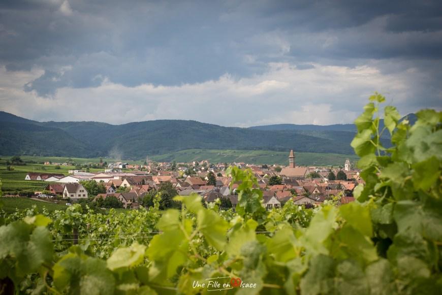 Bennwihr@Céline-Schnell-Une-Fille-En-Alsace-2020