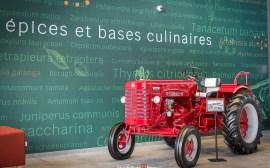 tracteur-cornick-strasbourg@Céline-Schnell-Une-Fille-En-Alsace-2021