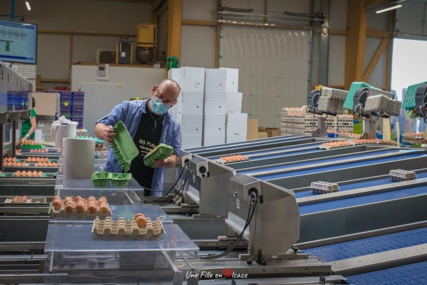 oeufs-ferme-primvert-Celine-Schnell-Une-Fille-En-Alsace-2021