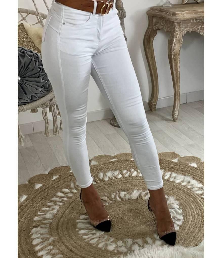 jean-blanc-poches-apparentes