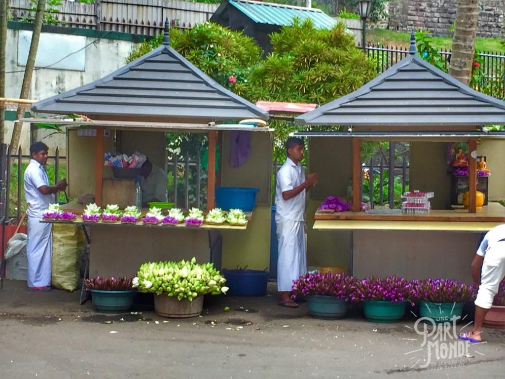 marchand-doffrandes-temple-de-la-dent