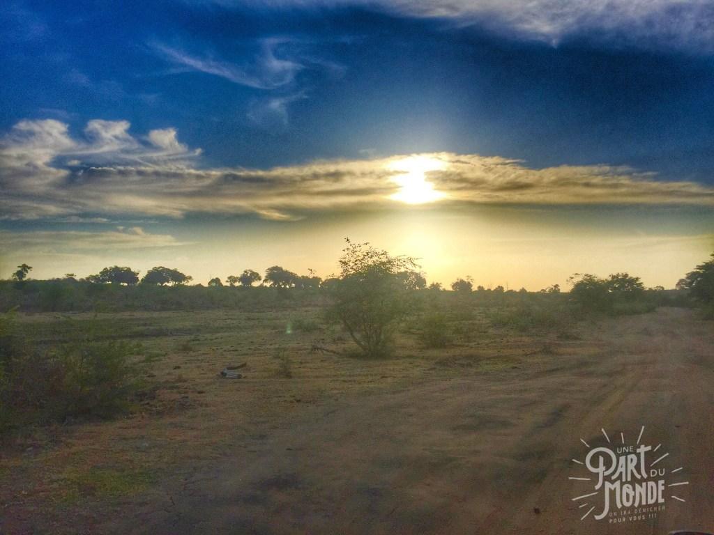 safari uda walawe paysage