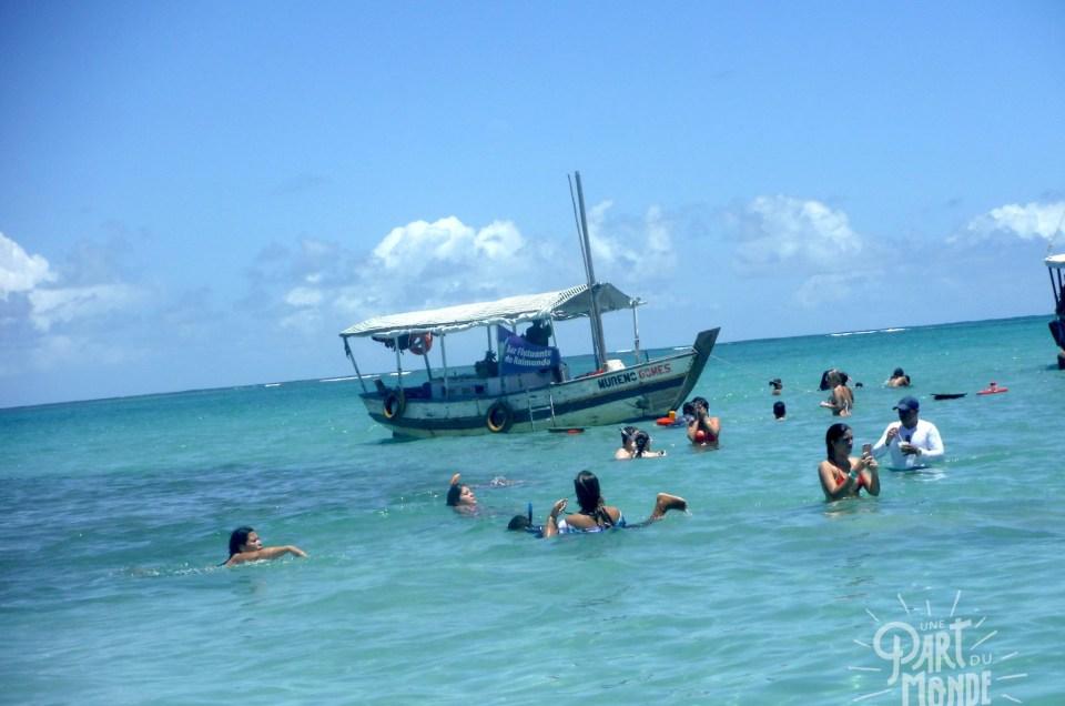 île de tinharé tour bateau bar flottant