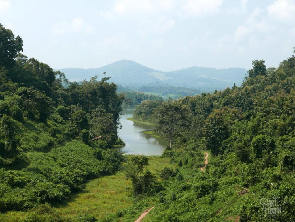 paysage elephant conservation center