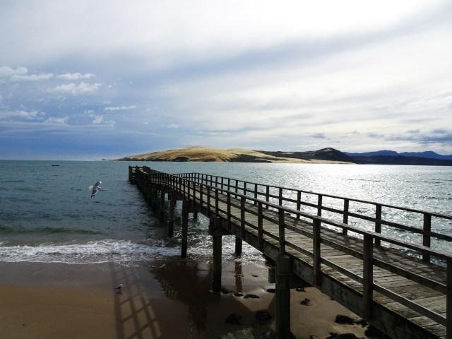 Landscape-peer-North-Island-New-Zealand
