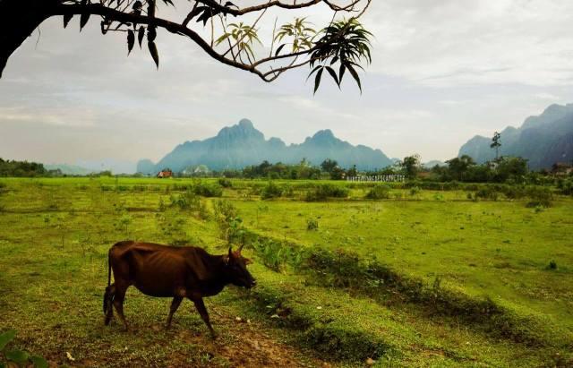 Travel_photography_spots_Kassie_Laos