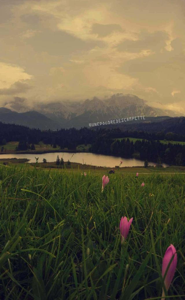 Photographing-Geroldsee-Bavarian-Alps-panorama-view-lake-with-crocus