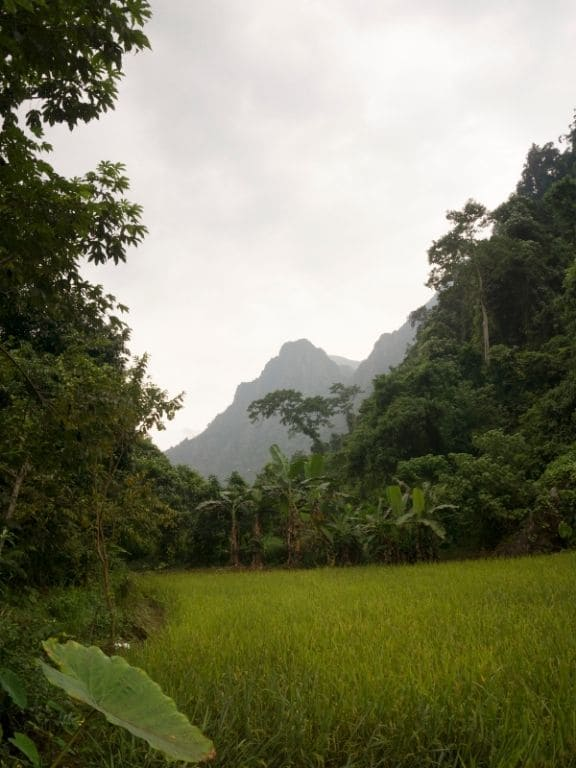 Off the beaten track Cave near Vang Vieng - path leading to the cave - unepoudredescampette