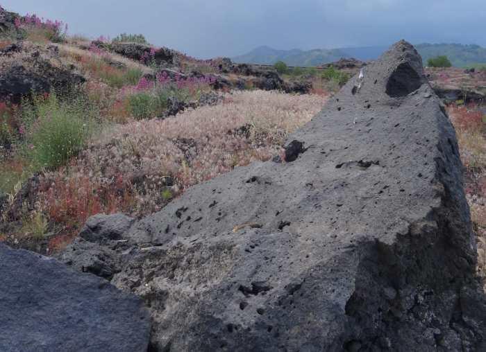 Puntige lavasteen te midden van kleurige begroeiing op Etna