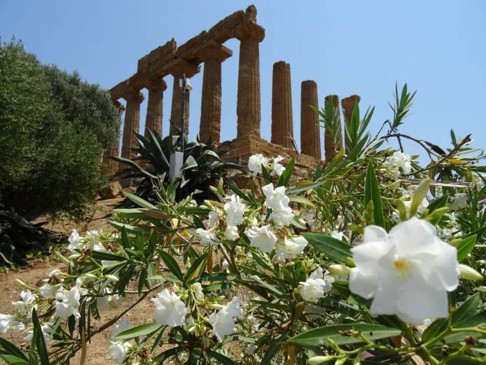Oude tempel in Agrigento