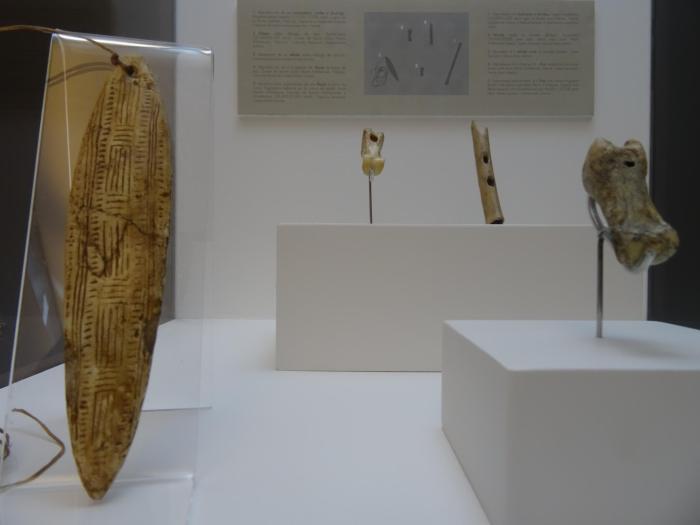 Vitrines vol prehistorische voorwerpen in het museum van Altamira