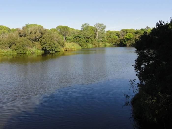 Meer van Acebró in natuurpark Doñana