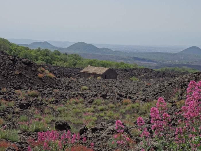 Oud huis te midden van lavasteen op de flanken van de Etna