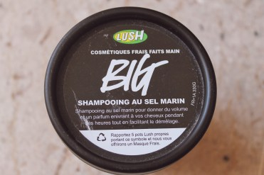 Shampooing BIG (17,95€)