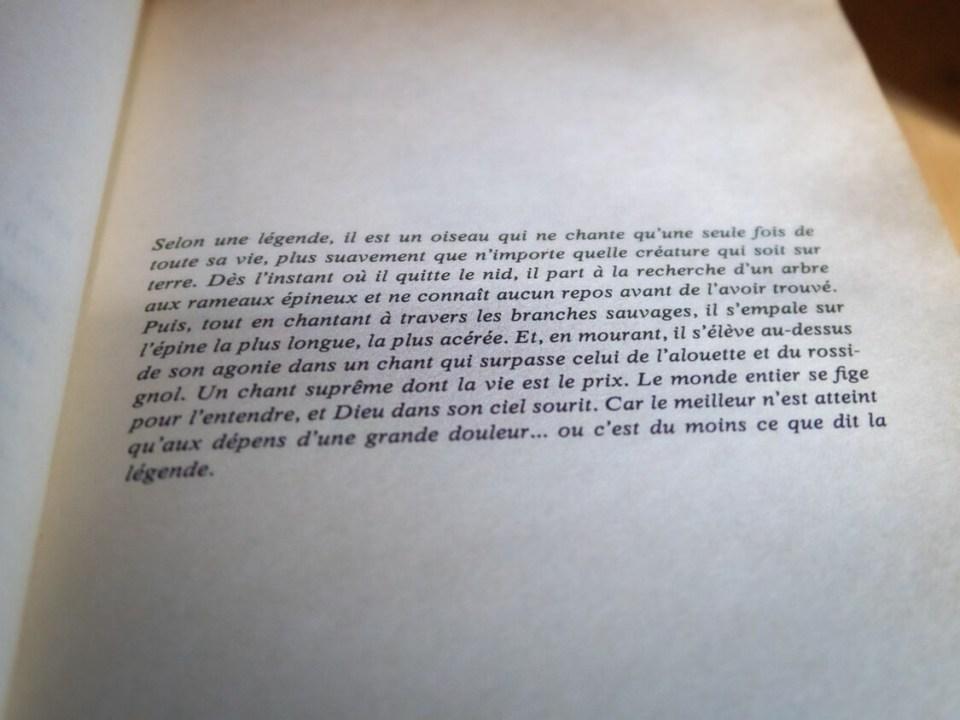 Première page du roman Les Oiseaux se Cachent Pour Mourir