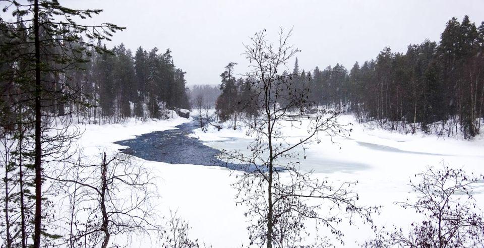 Vue sur la rivière gelée Oulanka, dans le parc national d'Oulanka, Laponie Finlandaise