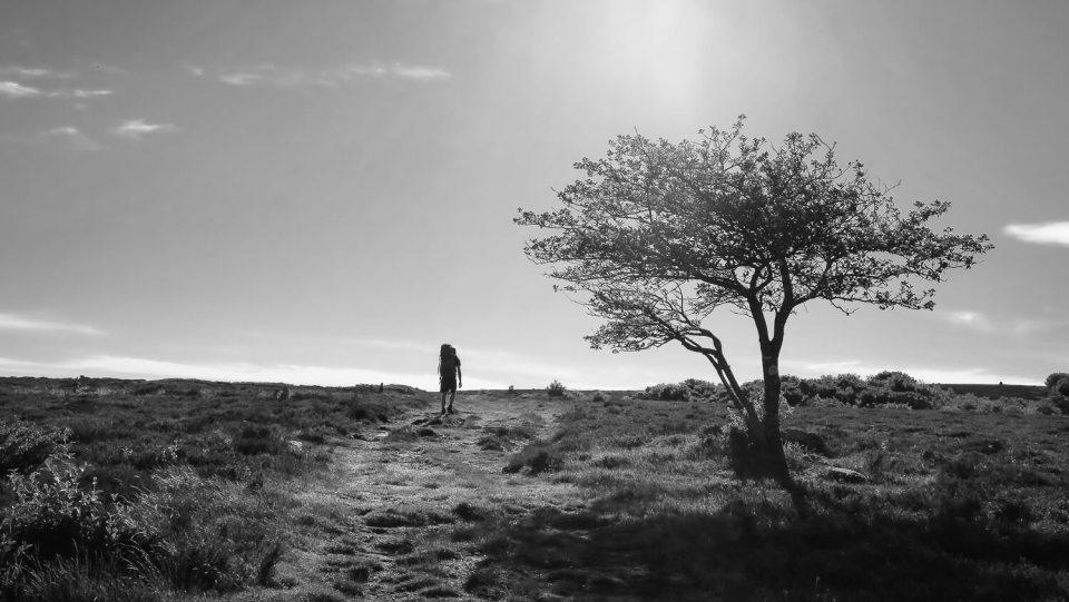 Le plateau du Caroux avec un homme portant un sac à dos