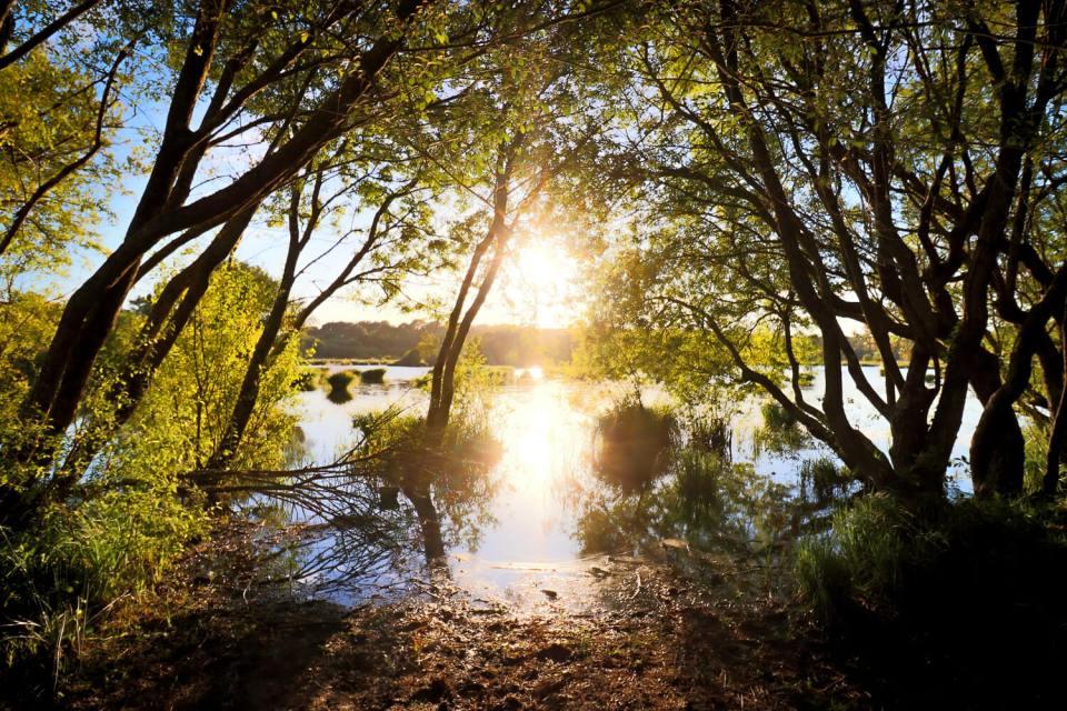L'étang du Varquez au coucher du soleil, un point phare de mon road-trip en Bretagne