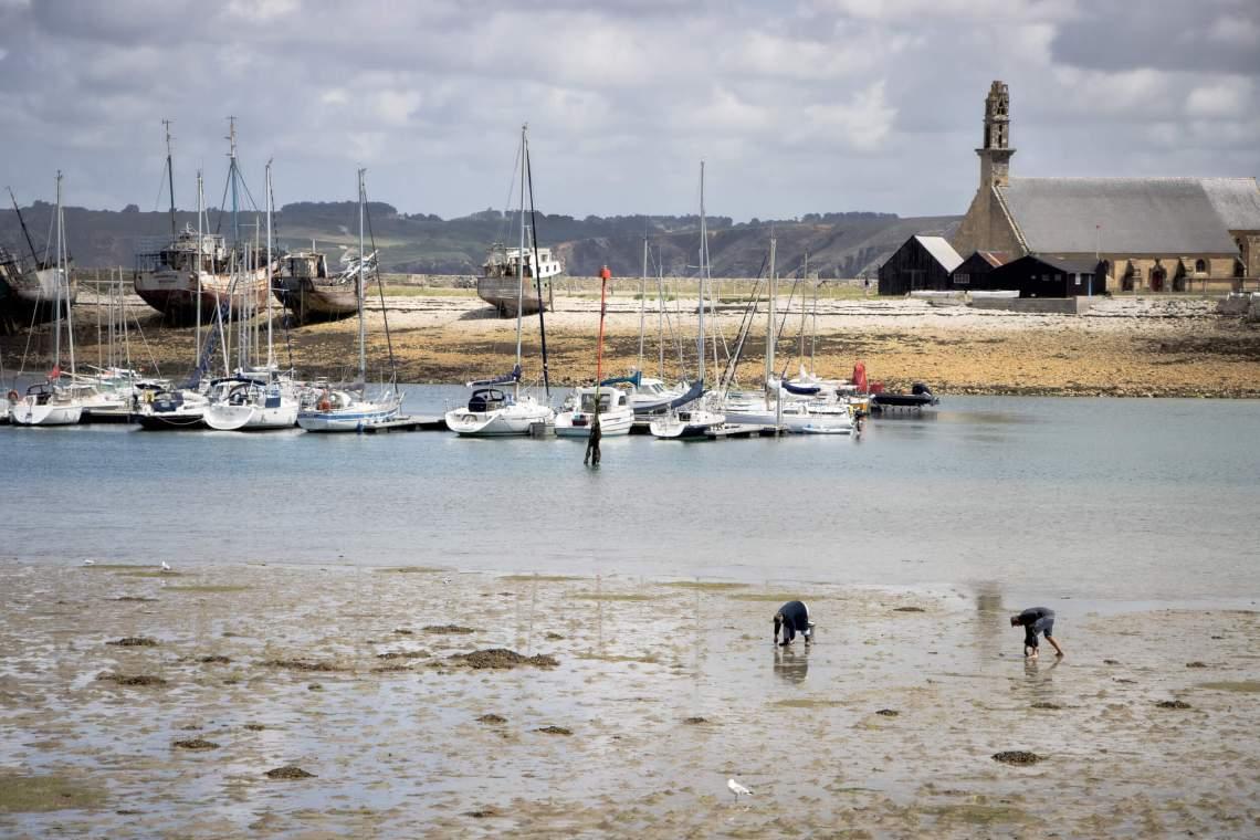 peche-a-pied-camaret-sur-mer-bretagne