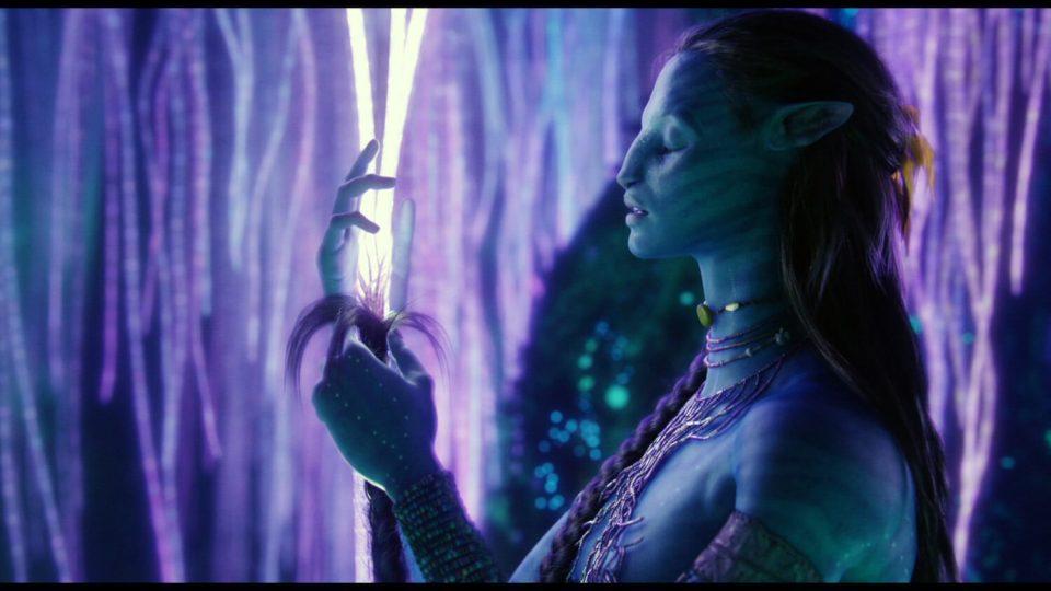 Image du film Avatar où Neytiri se connecte à l'écosystème de Pandora