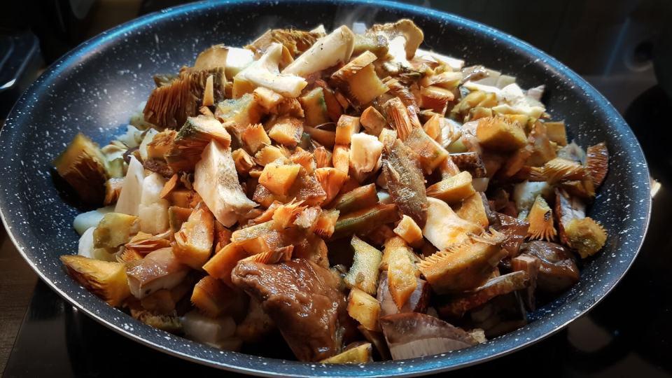 Poêlée de champignons des bois en train de cuire suite à une cueillette de champignons réussie