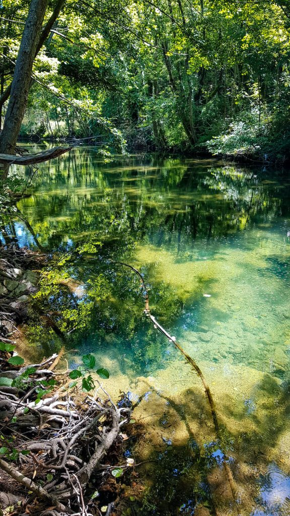 La rivière Le Jaur dans le Haut-Languedoc qui passe devant notre mazet à Prémian