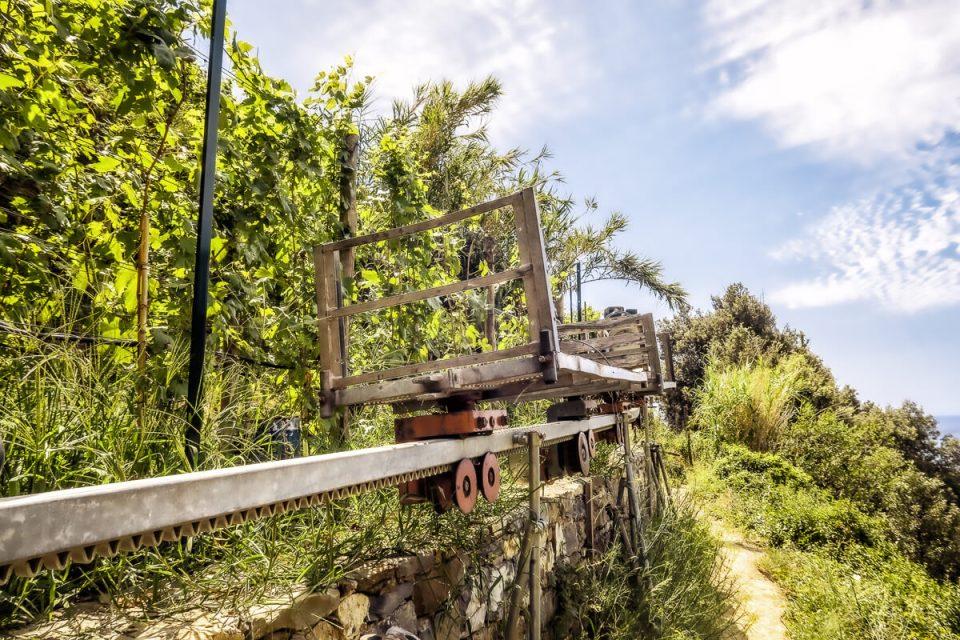 """Un """"trenino"""" ou train à crémaillère, utilisé pour cultiver la vigne en terrasse aux Cinque Terre, dans des pentes de plus de 50°"""