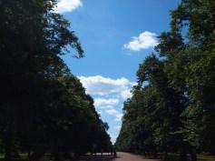 blue skies!!!