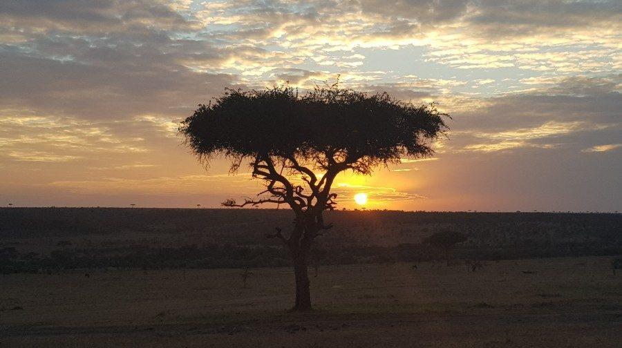 Masai Mara safari: Where to stay?