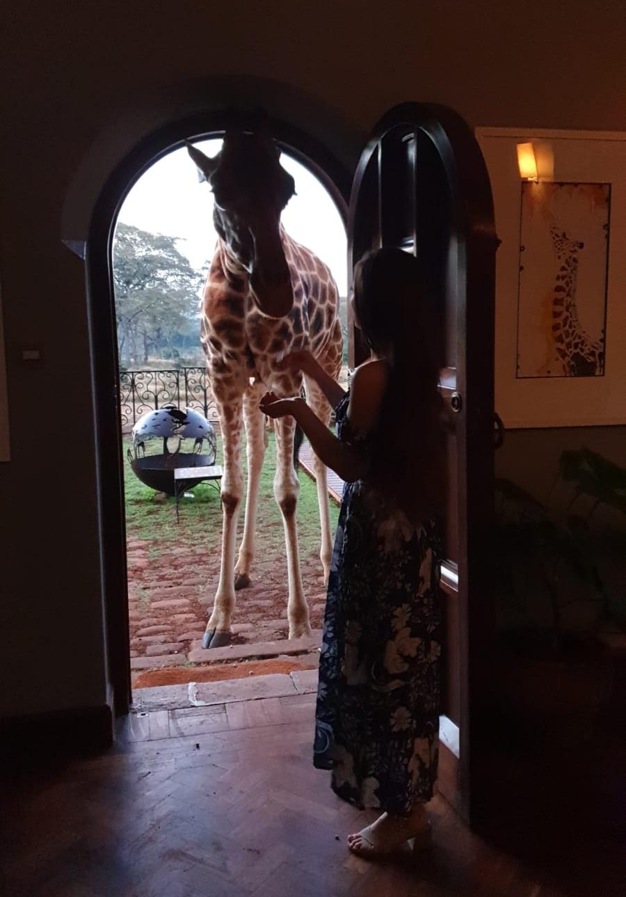 Giraffe manor doorway