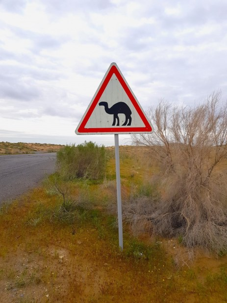 Camels crossing sign