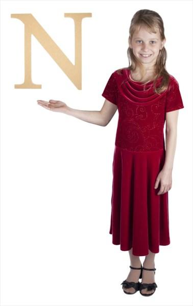 "Times New Roman 16"" Letter N"