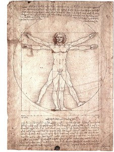 Leonardo's Vitruvian Man - Golden Mean
