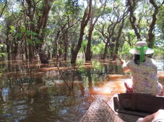 "Kampung Phlok, the ""flooded forest."""