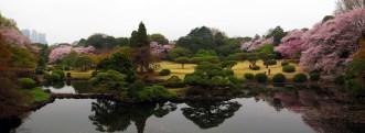Shinjuku Gyoen National Garden.
