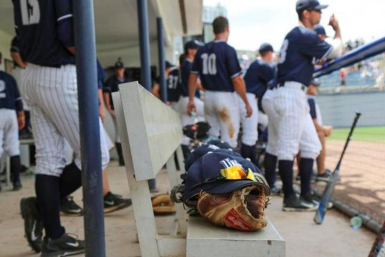 Photo by Camille Shaw - baseball