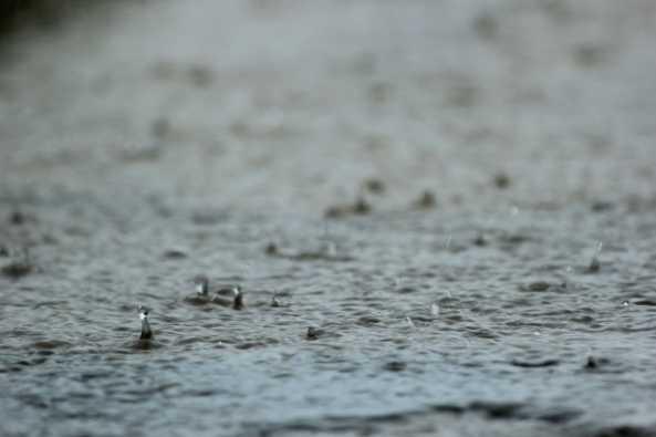 Hurricane season started June 1. Expect some rain.