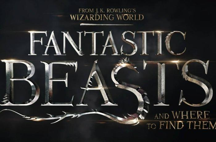 "Fantastic Beasts and Where To Find Them: ""Better than expected"""
