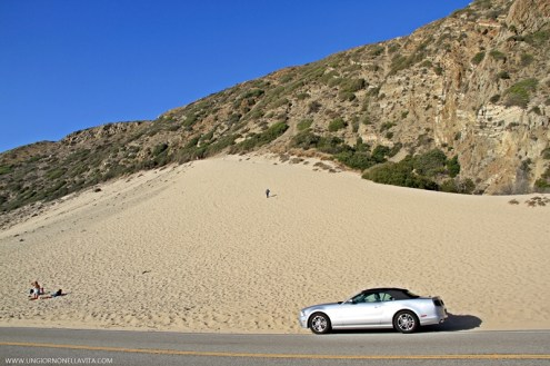 I regret not climbing this sand hill but then again that's something I'm looking forward to on my next trip near the area. :)