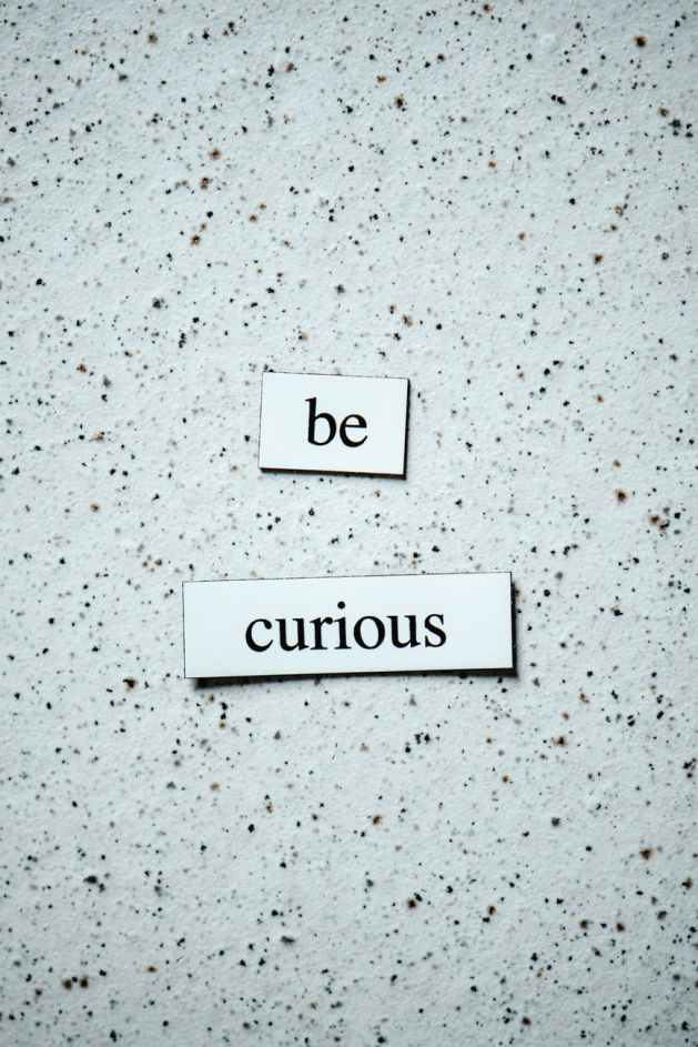 """cold dirty texture wall with words """"be curious"""" on it"""