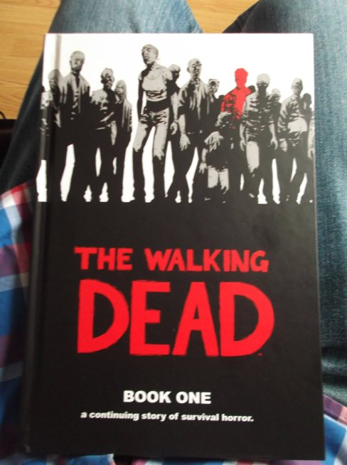 the_walking_dead__book_1_by_delorean7-d6fdtzt