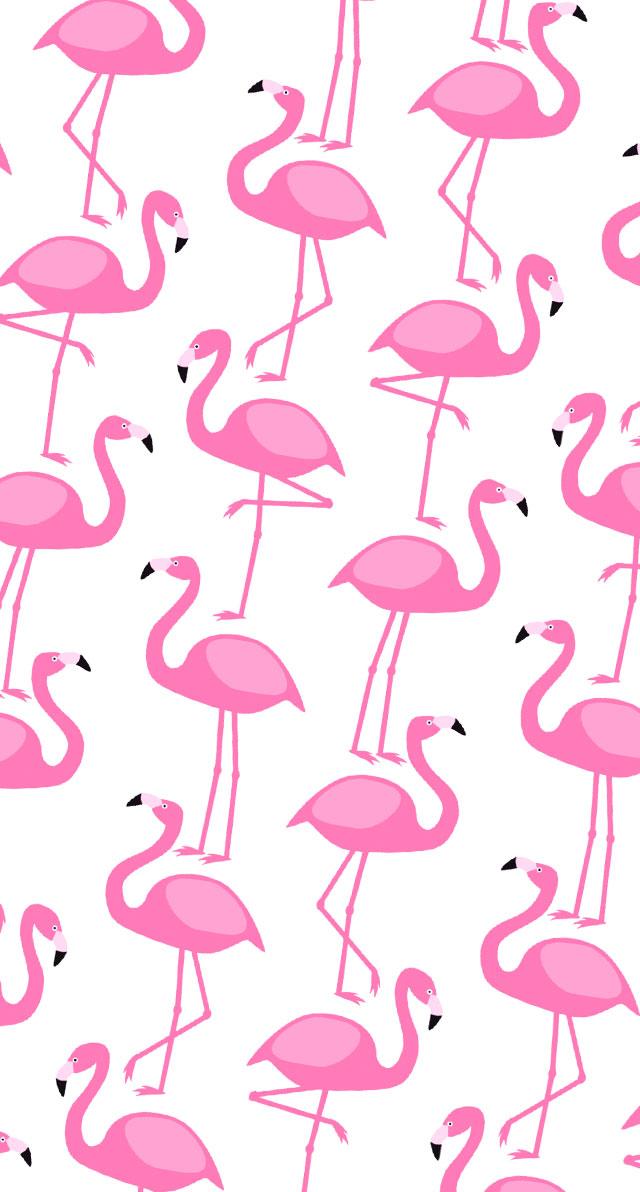 Preferência Papéis de Parede Para Celular Flamingos – Unhas da Lalá NO24