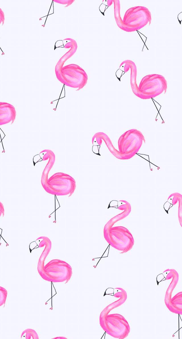Conhecido Papéis de Parede Para Celular Flamingos – Unhas da Lalá EC27